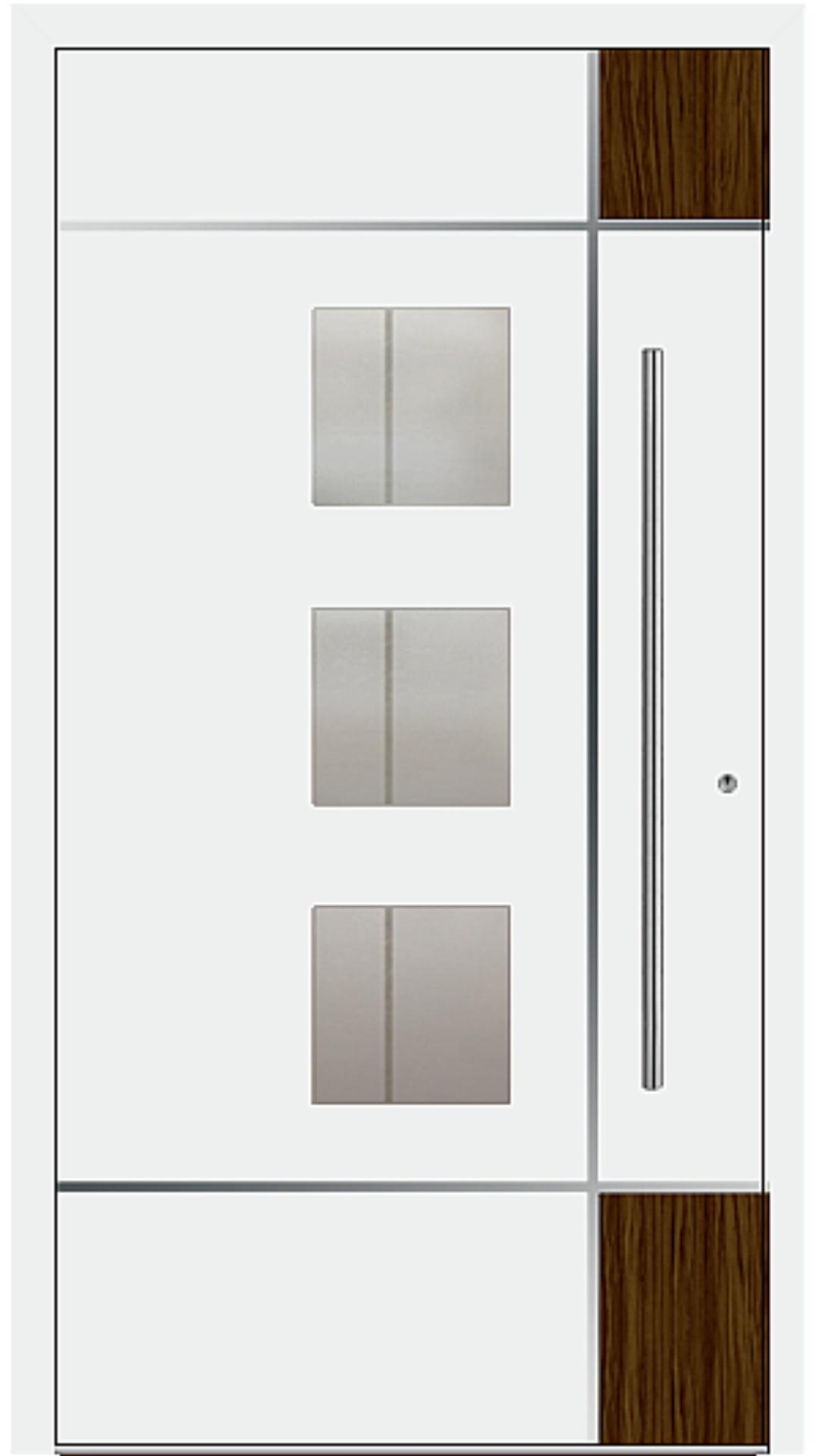 PaXentree Aluminium Haustür M04371