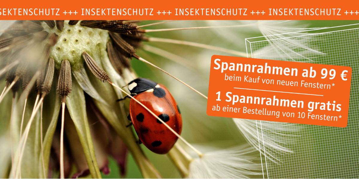 Insektenschutz mit dem Klima-Paket von PaX